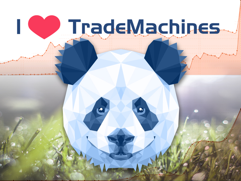 TradeMachines Improves Visibility on Google by over 260 Percent