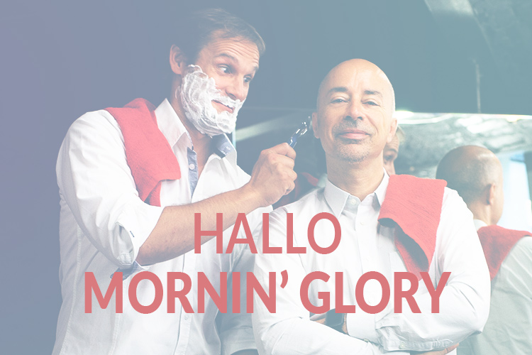 Hallo Mornin' Glory! | Companisto Blog