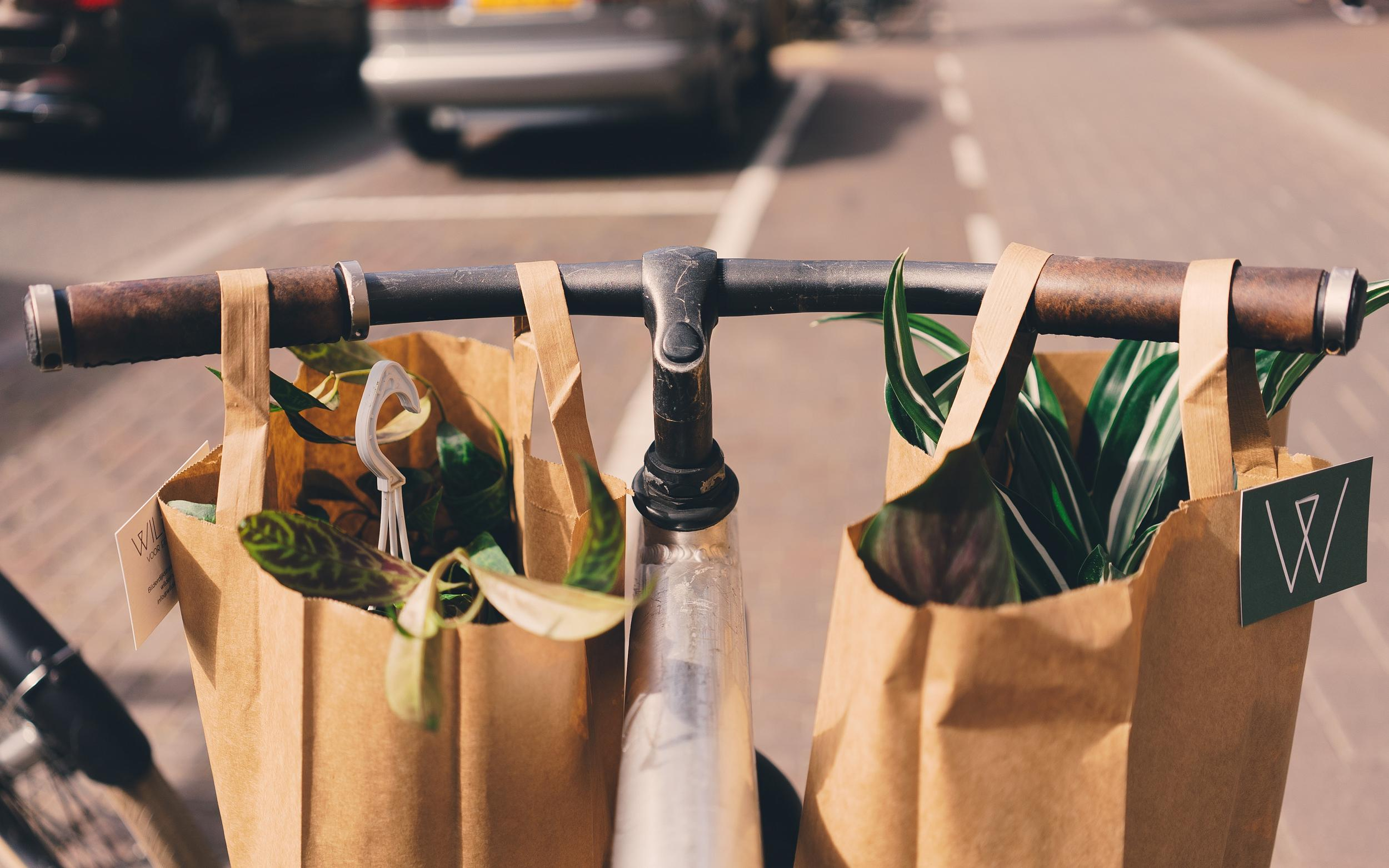"""Nachhaltigkeit durch """"Grüne"""" Startups"""