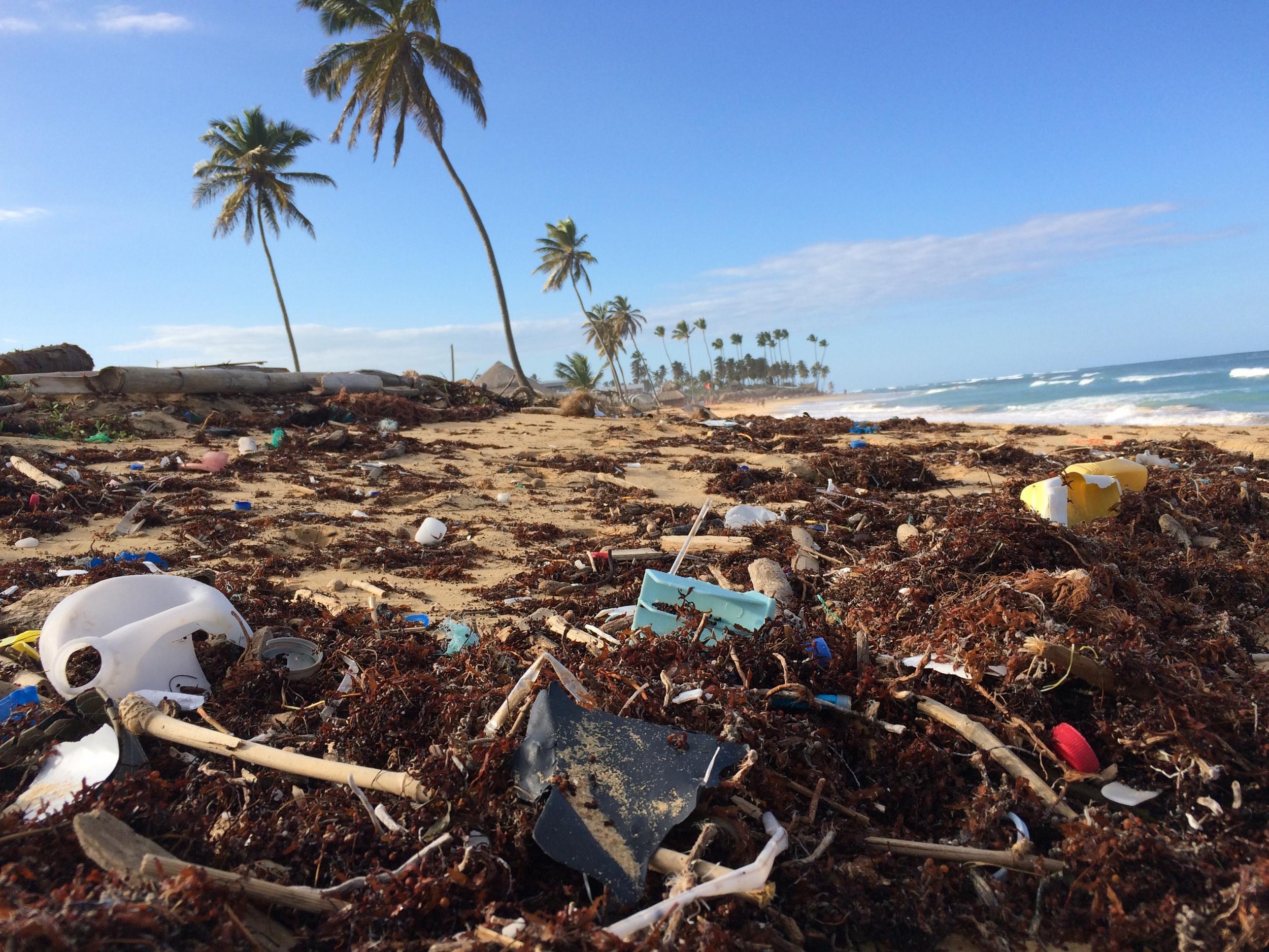Ein Leben ohne Plastik? Diese Startups machen´s möglich | Companisto Blog