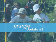 Cringle - now you can plant trees with your smartphone