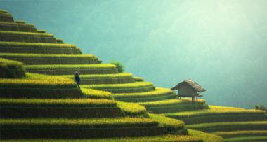 Nachhaltig investieren mit Impact | Companisto