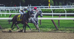 Crowdinvesting 6 Punkte | Companisto