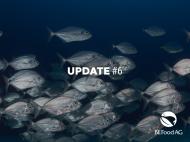 Fisch aus der StadtFarm: gesund für Planet & Kunden