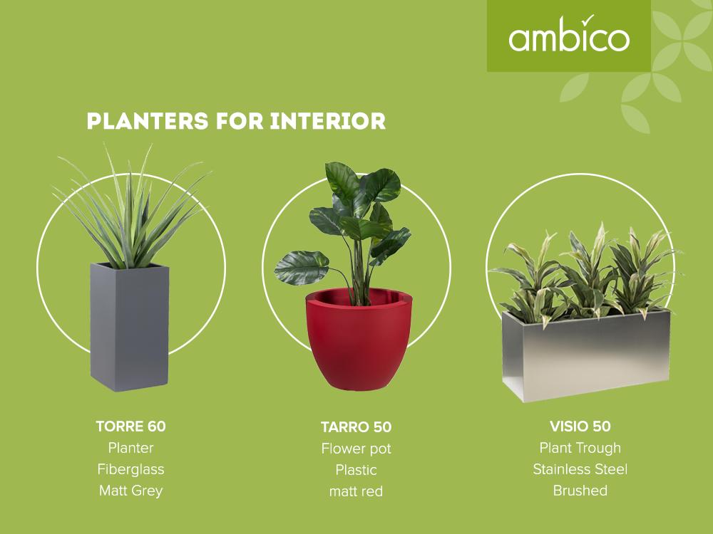ambico planters for interior