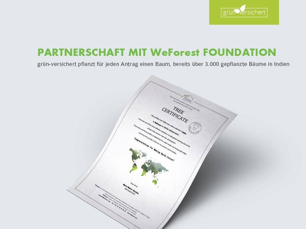 Partnerschaft mit WeForest